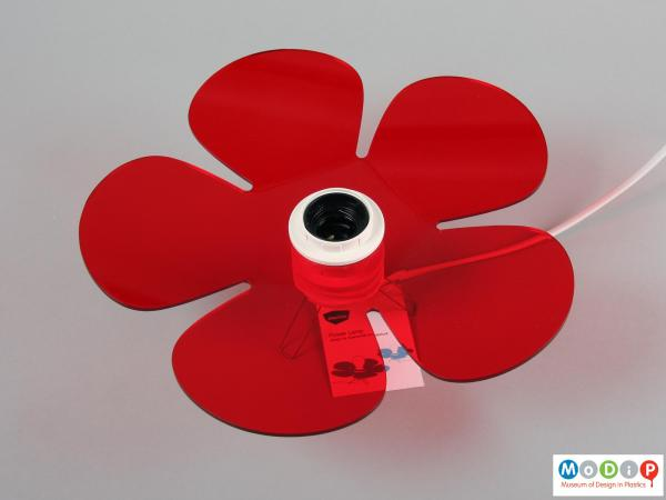 Top view of a table lamp showing the flower shape.